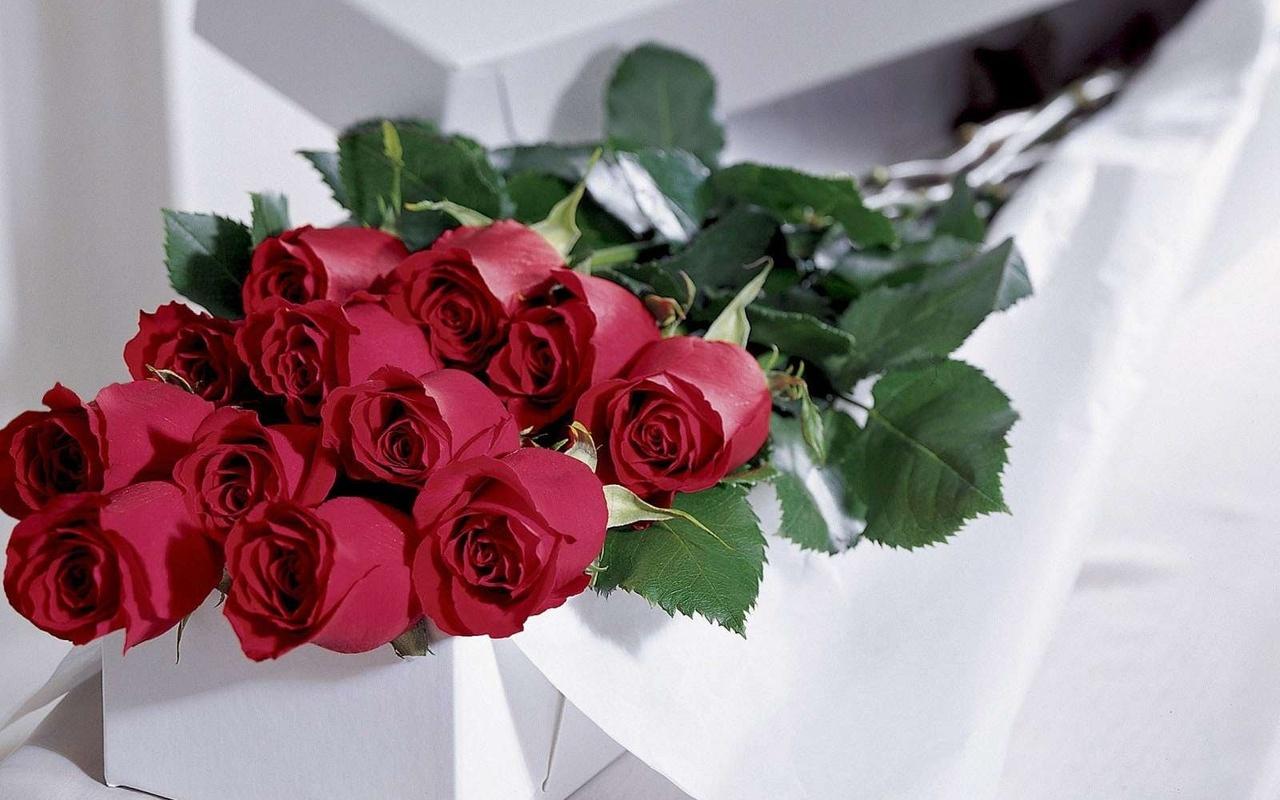 Обои розы, подарок, цветы 411186 / Раздел: Цветы / HallPic.ru