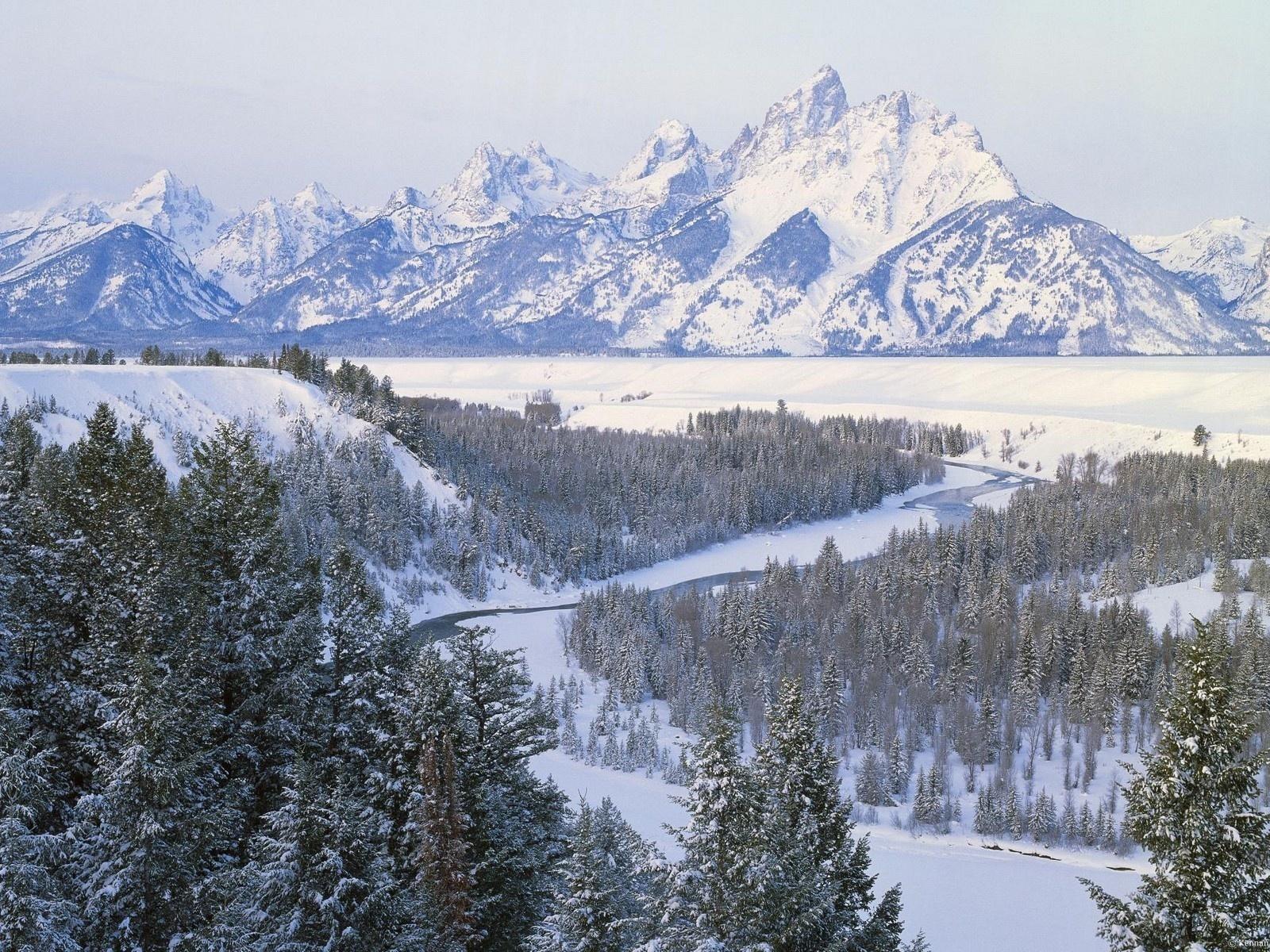 Обои зима горы елки снег вид река