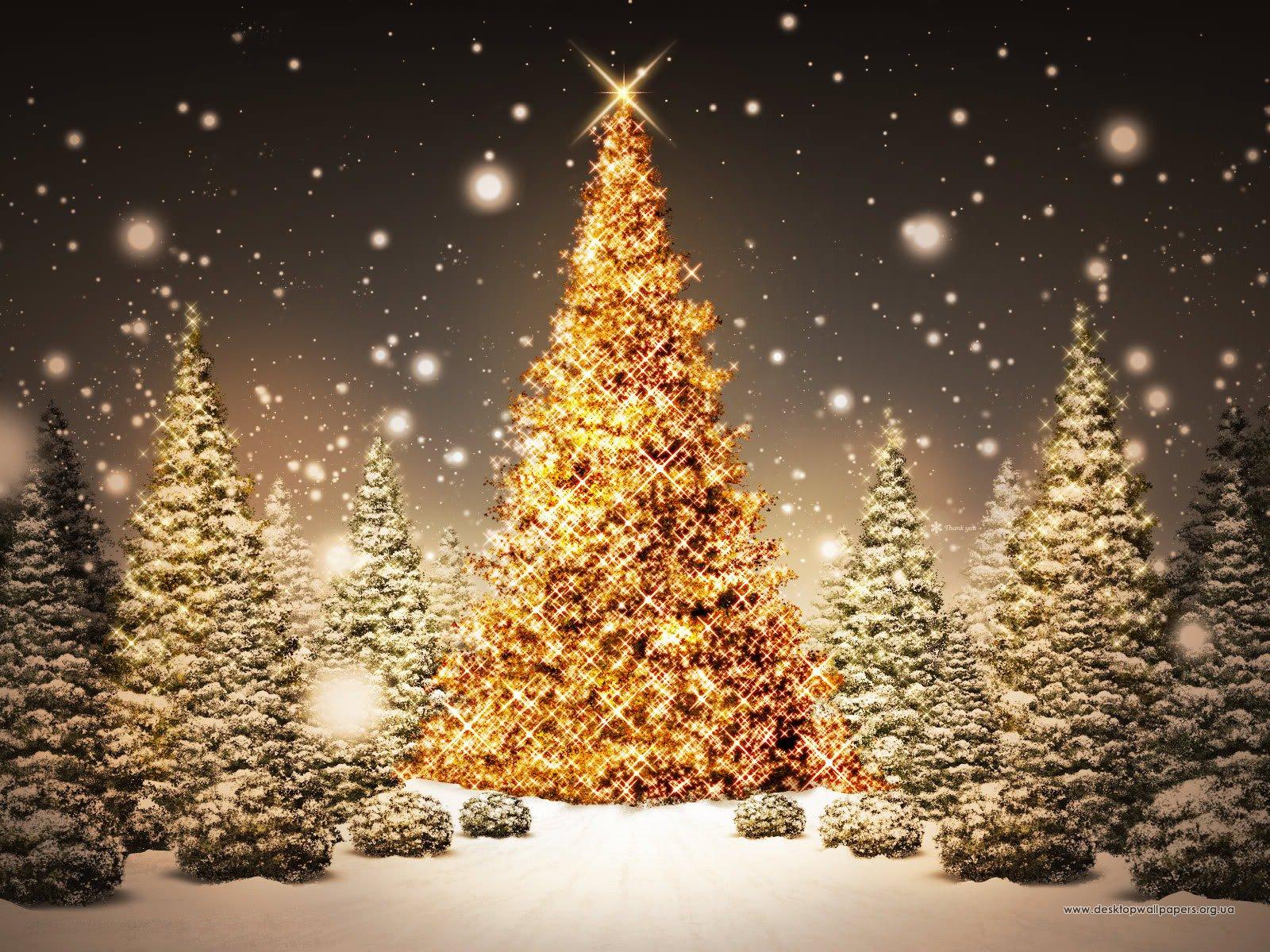 Шпалери різдвяна ялинка переглянути