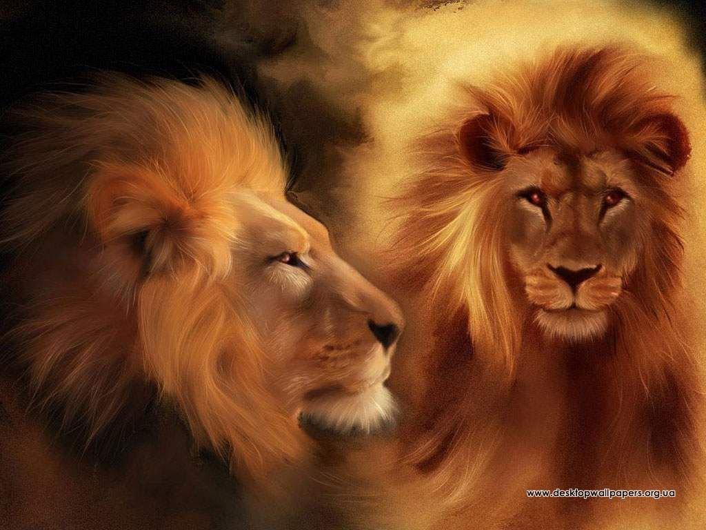 Шпалери леви переглянути зображення