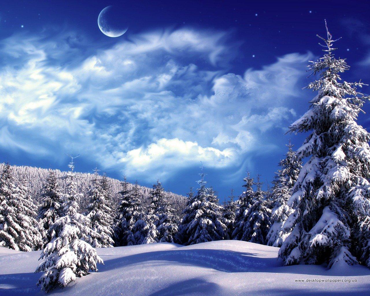 Шпалери зимовий ліс переглянути