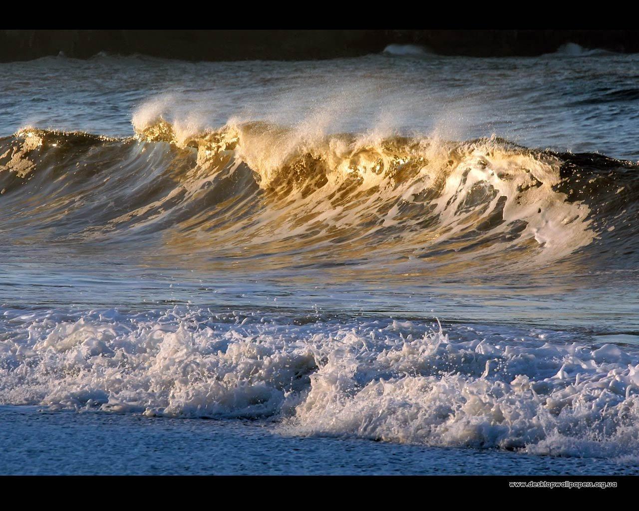 Шпалери золоті хвилі переглянути