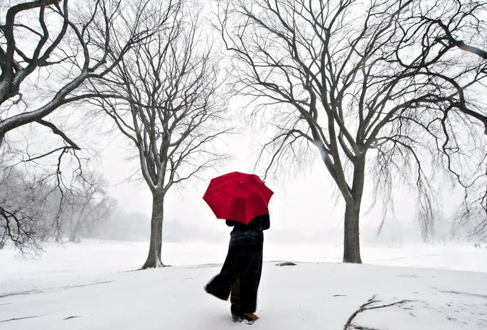 Сакура япония снег девушка зонт