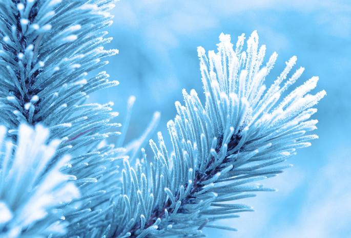 зима в горах обои для рабочего стола