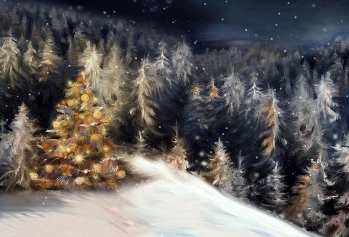 Обои снег рождество зима лес ночь