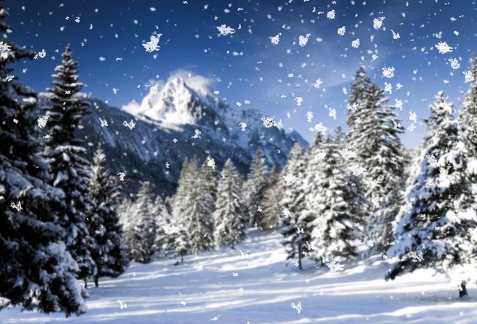 Метель зима снег природа макро
