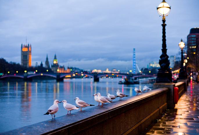 Город улица река лондон англия
