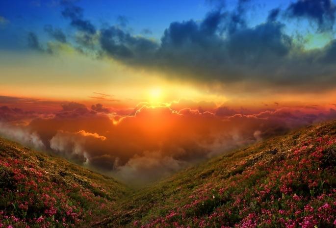 Небо солнце природа пейзаж закат