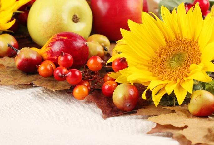 Осенние листья заставка на рабочий стол 1