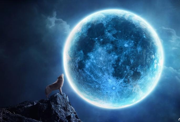 Обои коллаж луна волк скала ночь