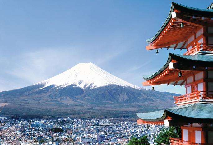 Обои фудзияма город япония сакура