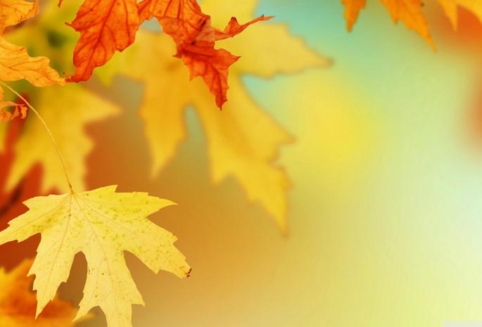 Картинки 3д осень