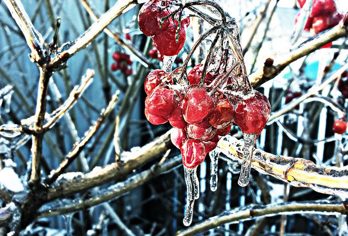 Фольксваген поло форум зимняя резина