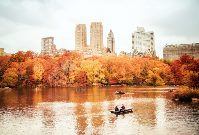 nyc, нью-йорк, манхэттен, manhattan, new york, New york city, usa, central park