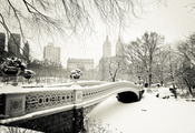central park, usa, New york city, bow bridge, нью-йорк, nyc, сша, manhattan
