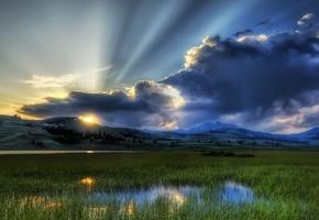темные тучи, лучи солнышка, болотистая местность