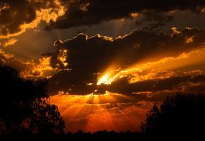 Закат, солнце, облака, вид, лес, тени