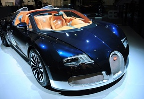 veyron, цвет, салон, grand sports, Bugatti