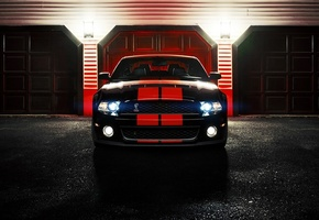 shelby, ronaldo stewart photography, gt500, cobra, ford, mustang