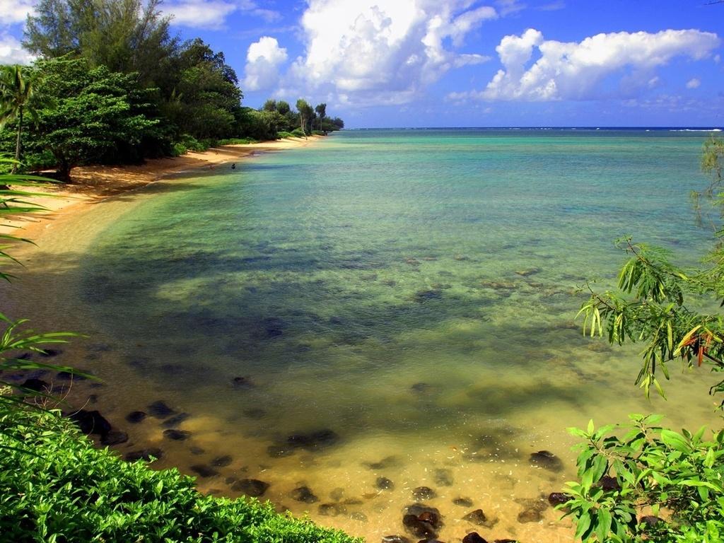 шикарное место, дикий берег, залив, пляж, вода, небо, берег, море, гавань, бухта, пейзаж, природа, растения, зелень, прибой, тишина, релакс, спокойствие, облака, отдых