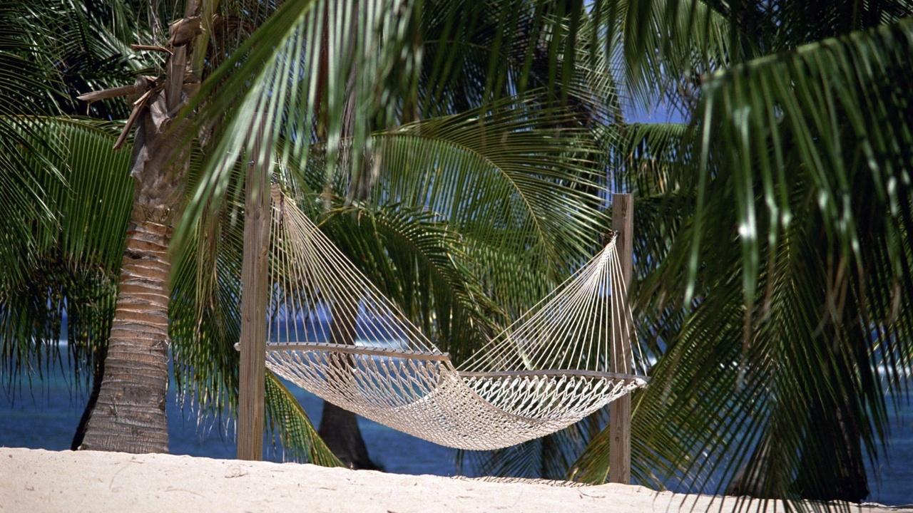 пальмовые ветки, гамак из ниток, жара, пальмы, тропики, лето, песок, пляж, берег, рай, отдых, природа, пейзаж, тишина,деревья, зелень, тенек, прохлада
