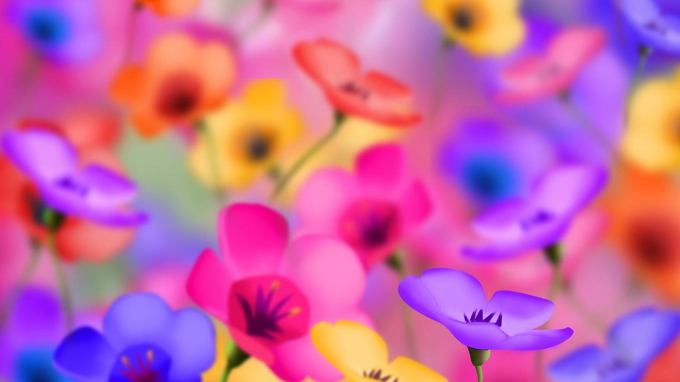 картинки цветы яркие