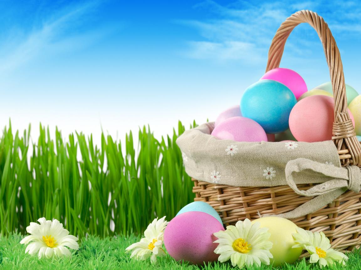 flowers, nature, grass, sky, easter, Holiday, eggs, пасха, зелень, ромашки, яйца, корзинка, крашенки, писанки