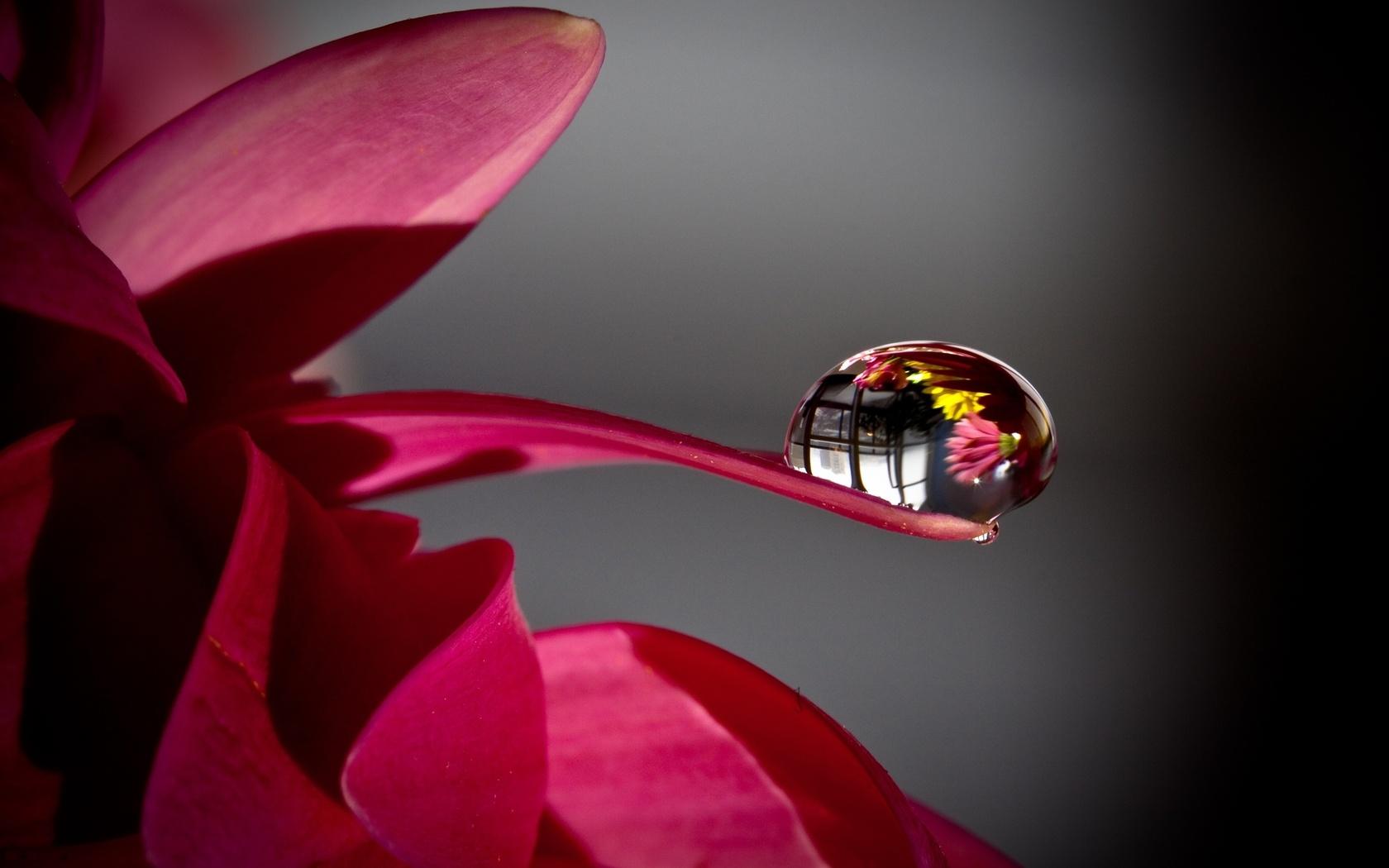 Дизайн ногтей градиент светлый фото