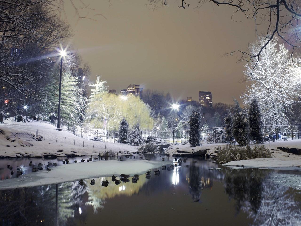 деревья, ставок, парк, фонари, зима, Город, снег