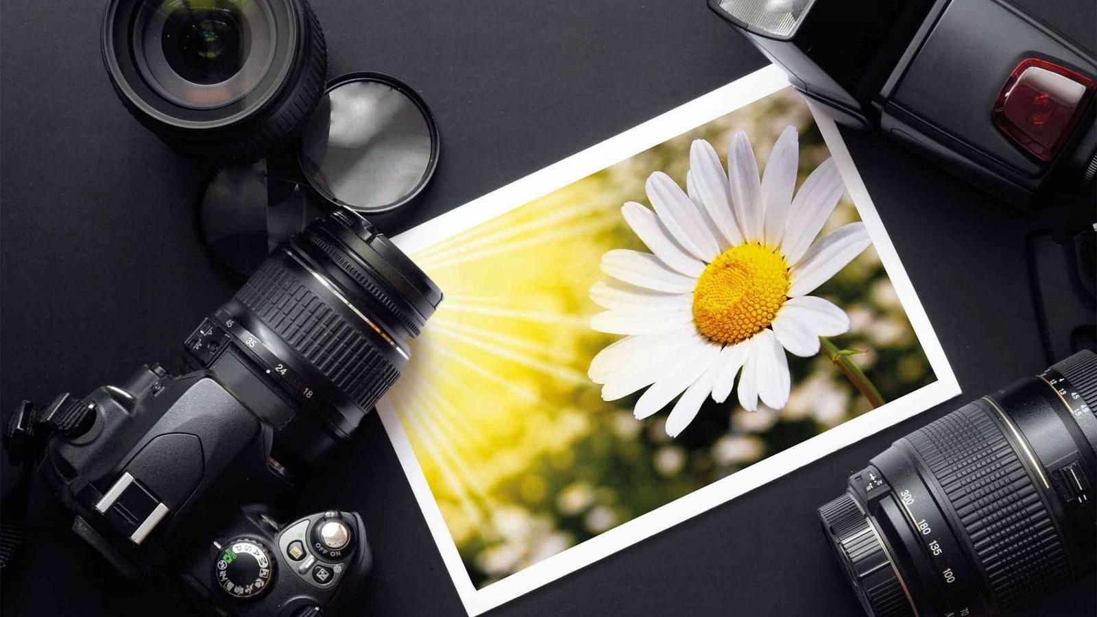 Как из фотопленки сделать цифровые фото