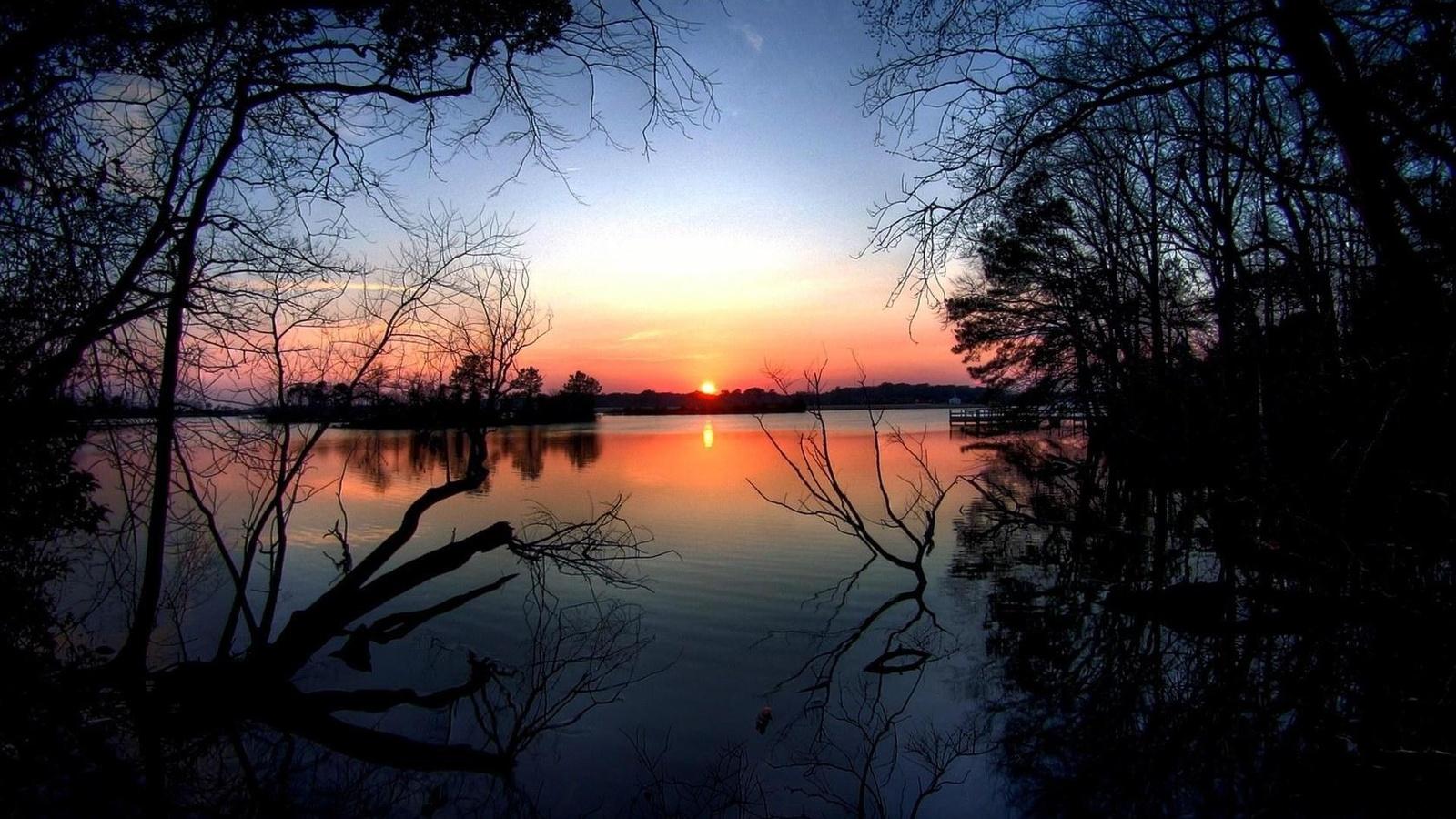 вода, деревья, закат, природа