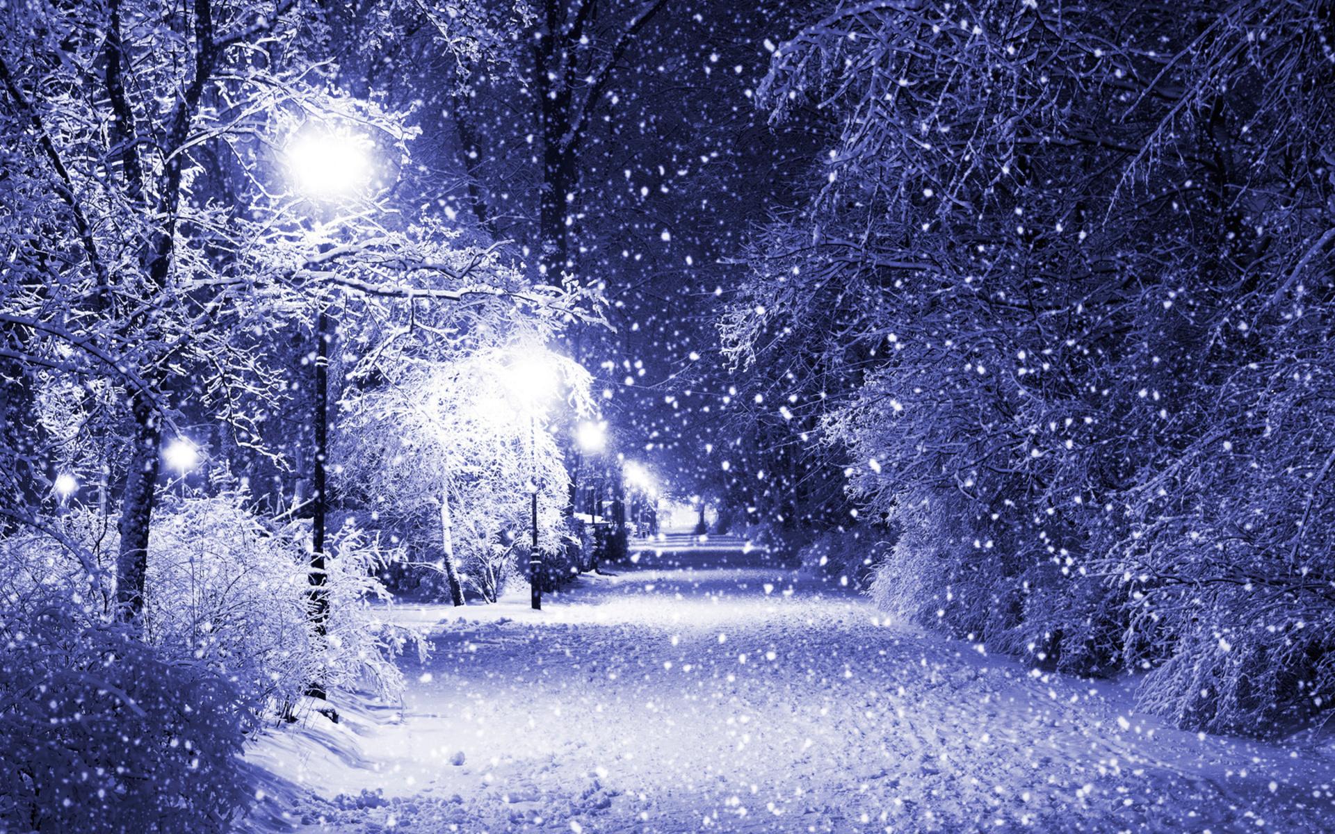 снег, свет, фонари, лавочки, ночь, зима