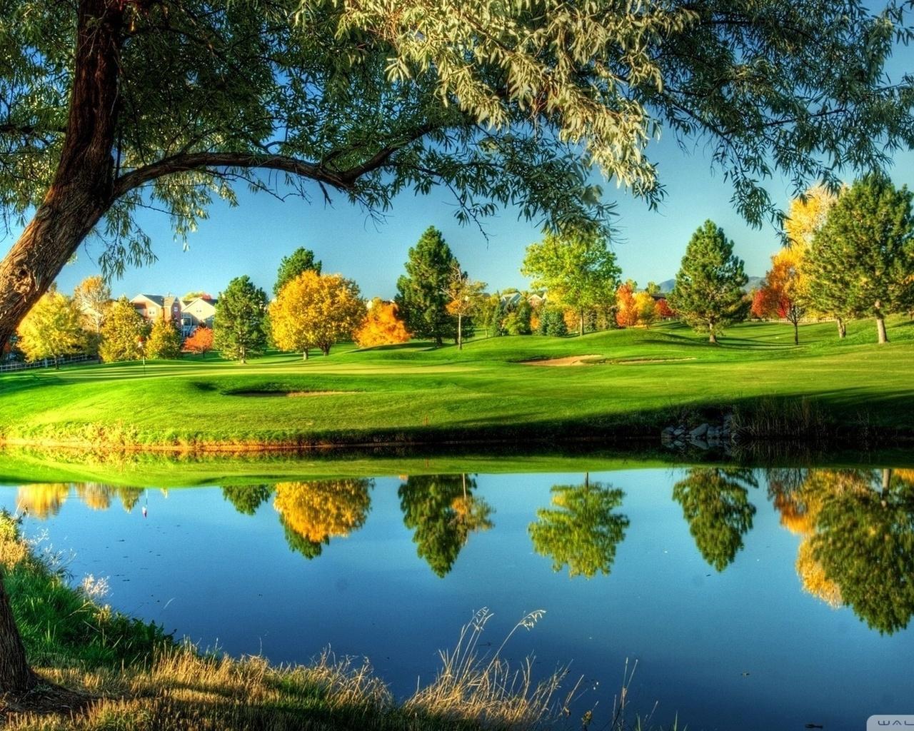 golf, sunny, course