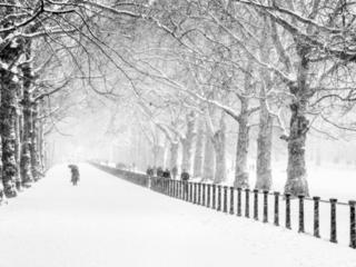 зима, снег, парк, люди, город, лондон