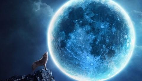 коллаж, луна, волк, скала, ночь, вой