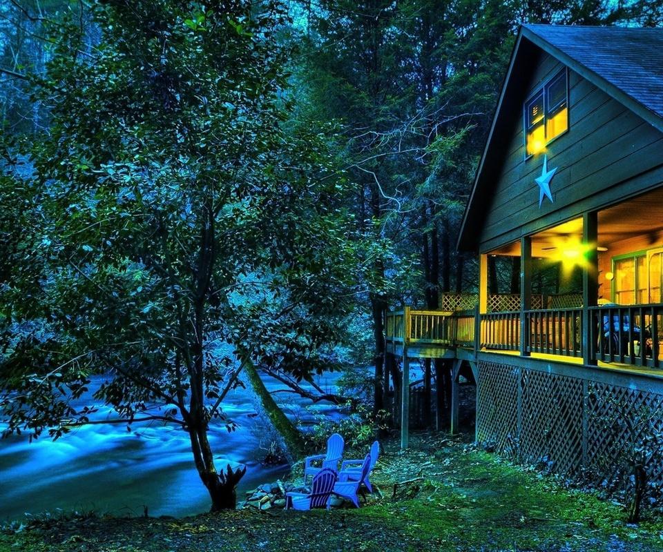 листья, Природа, лес, вечер, трава, сумерки, дерево