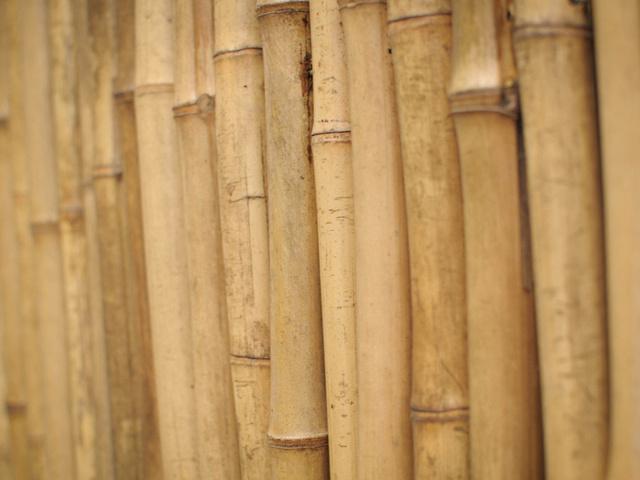 деревяшки, Бамбук, стебли