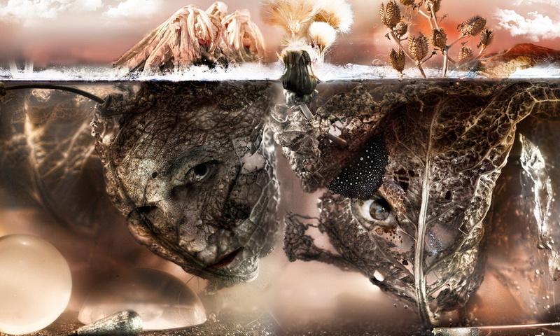 faces, leaves, Aquarium, dry, glass, silver