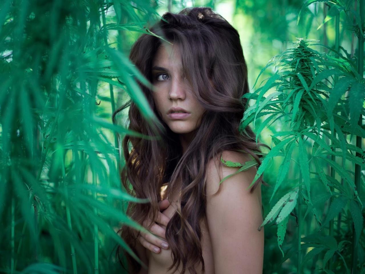 обнажена, девушка, зелень, канапля, взгляд, naked