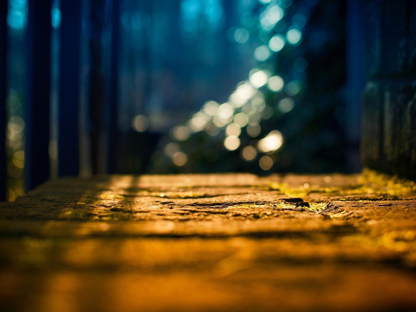 размытие, деревья, солнце, фон, земля, боке, Макро, свет